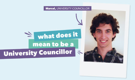 What does it mean to be University Councillor?